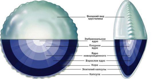 Повреждение хрусталика глаза